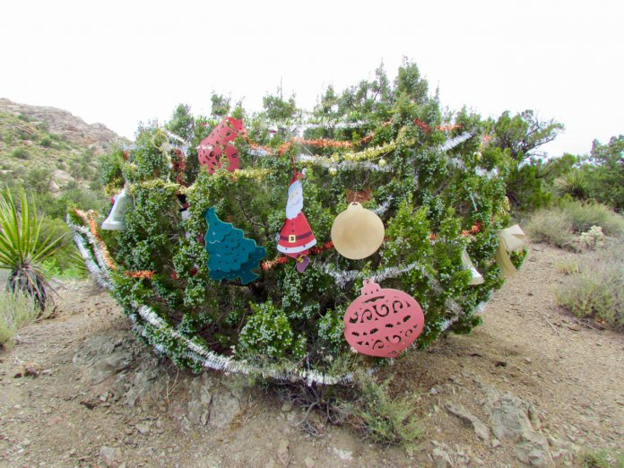 Christmas In The Pass 2020 Driven: Christmas Tree Pass in a 2020 Toyota Tacoma TRD 4x4